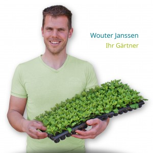Wouter Janssen